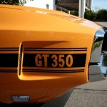 Shelby_1969_GT_350_19